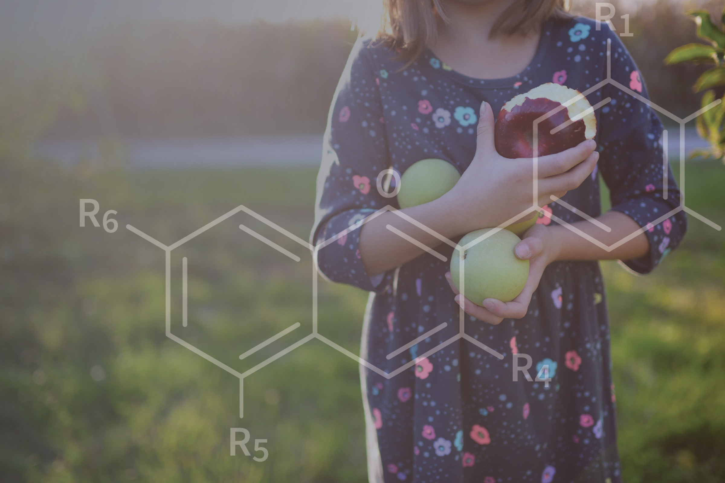 Girl holding apples in field with overlaid image of chemical compound